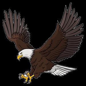Eagles clipart transparent.