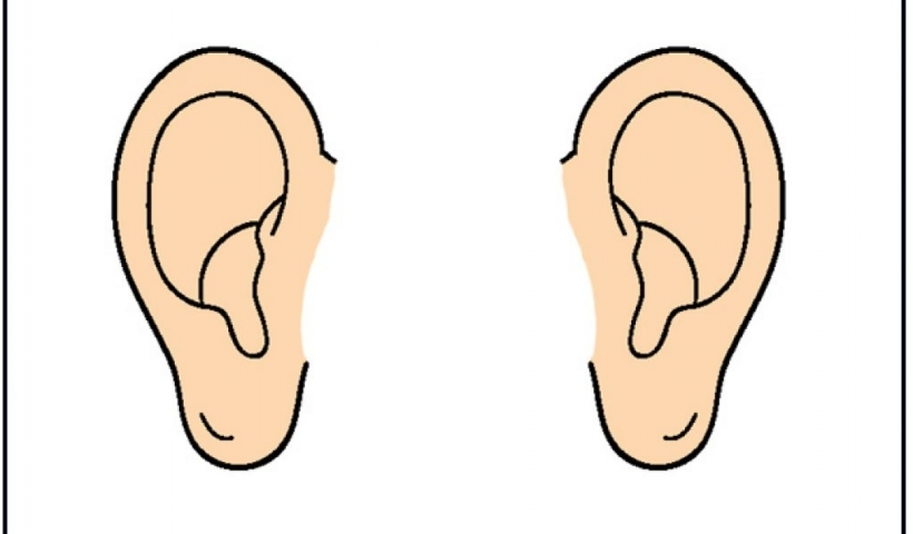 Collection ear clipart.