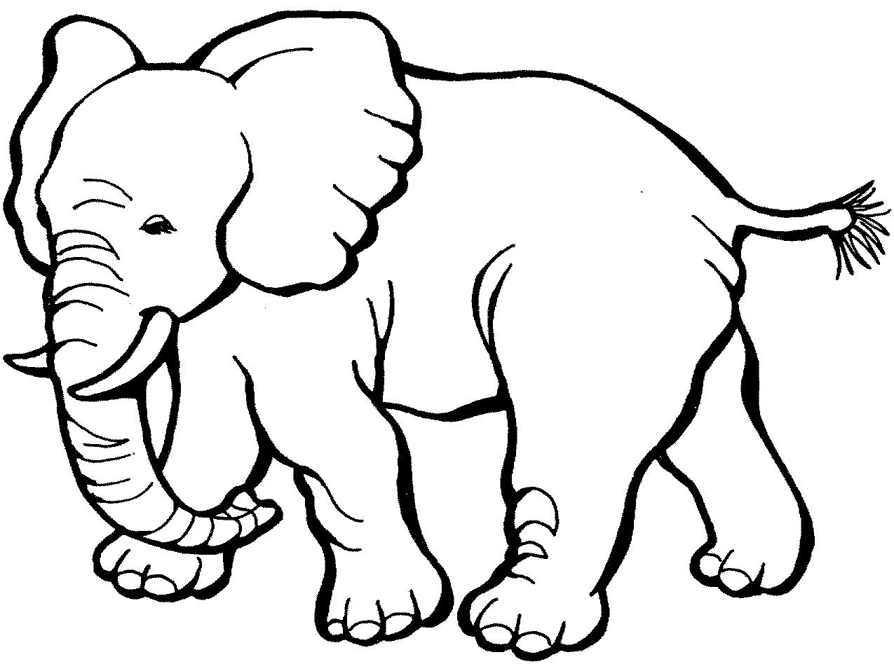 Best elephant clipart.