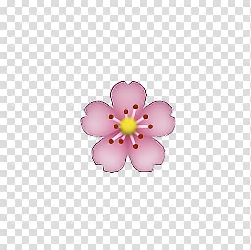 Pink petaled flower.