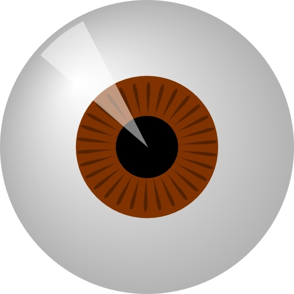 Brown Eye clip art Free vector in Open office drawing svg