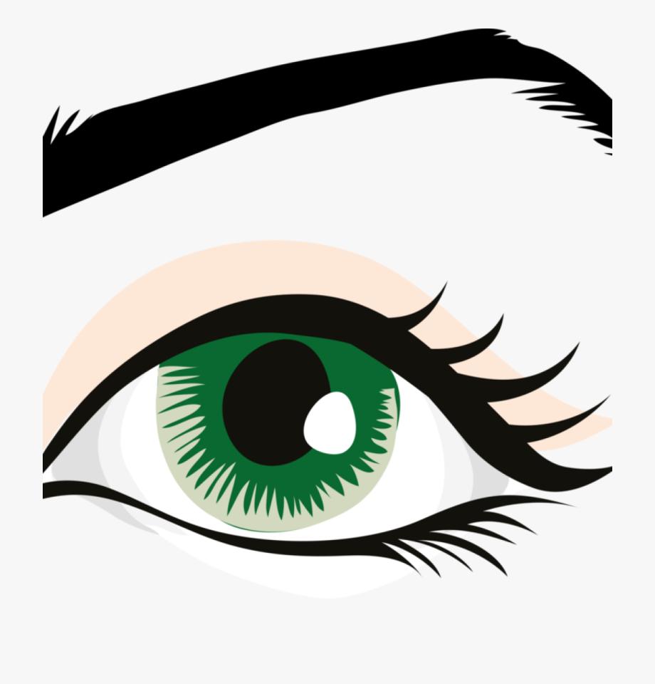 Eye clipart human.