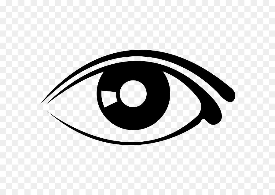 Human eye eyebrow.