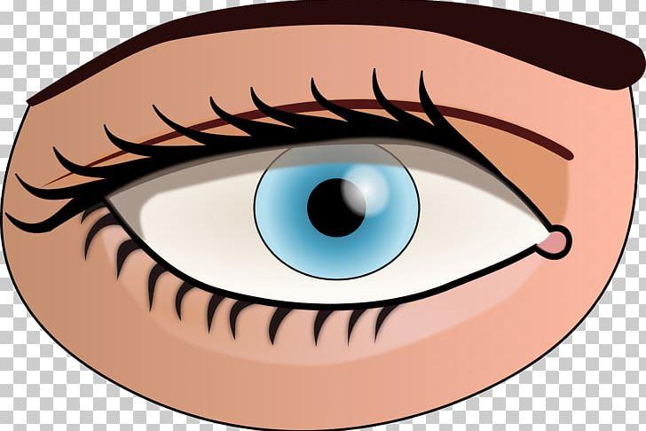 Human eye iris.