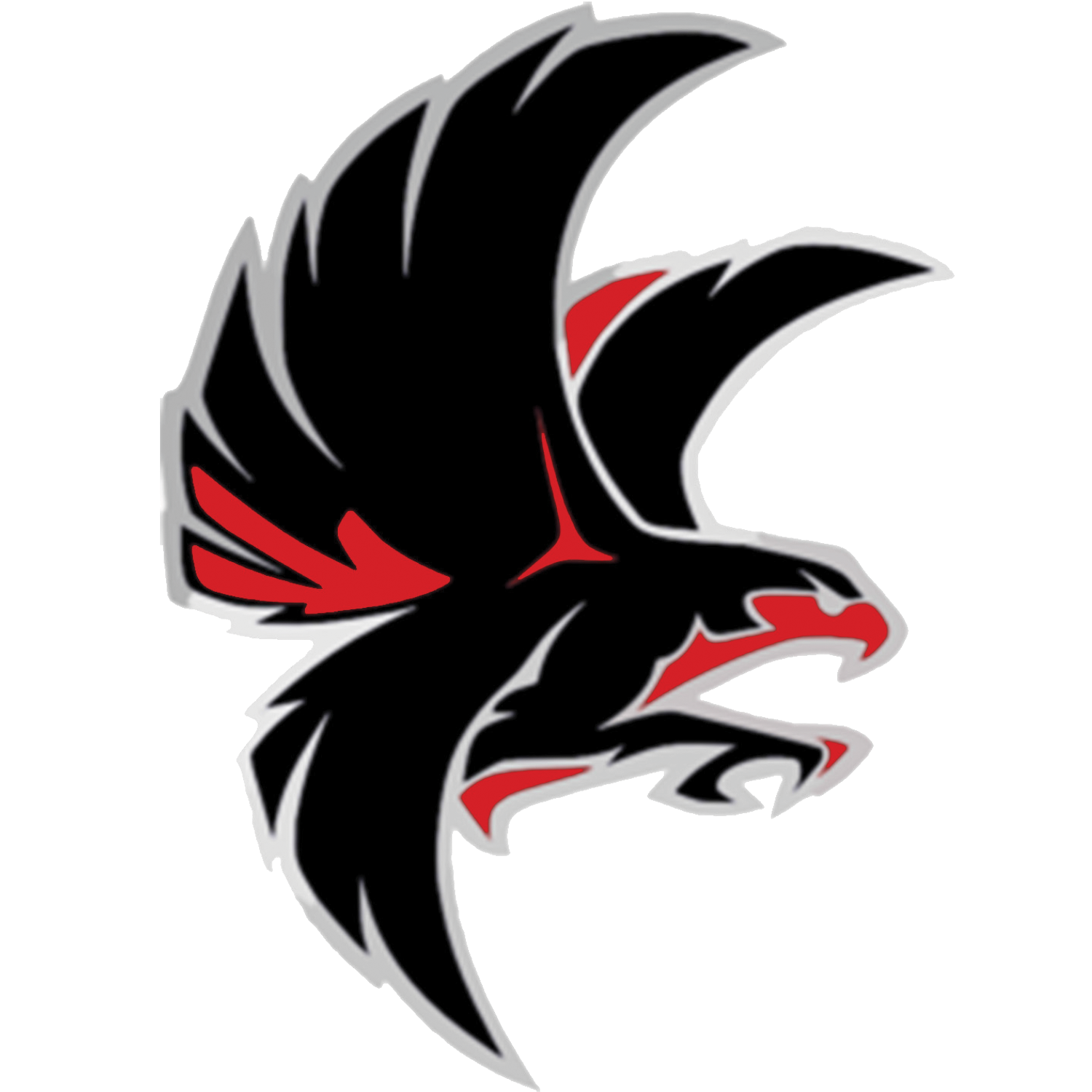 Falcon clipart basketball. Logo free download best