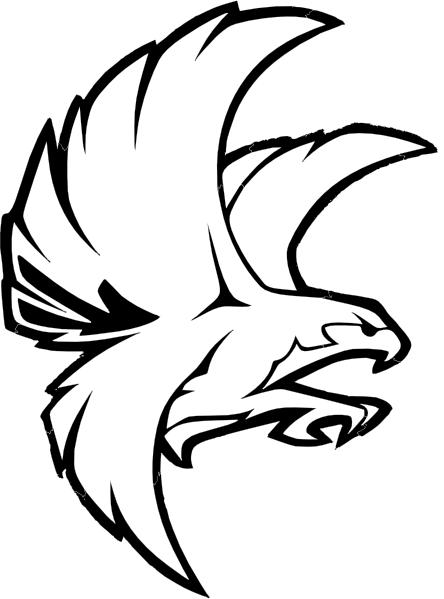 Falcon bw clip.