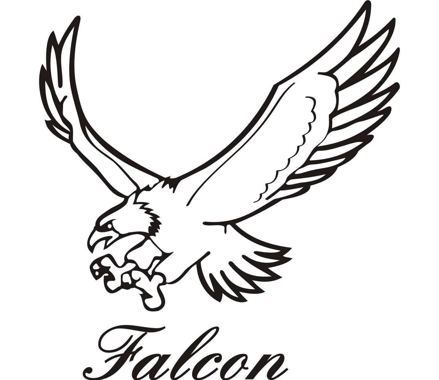 Best falcon clip.