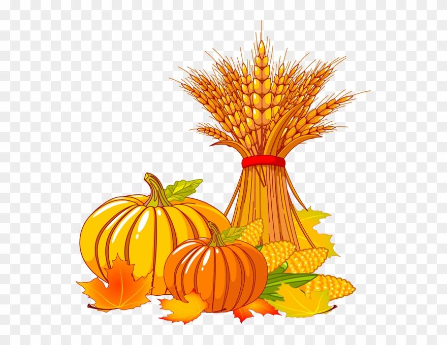 Fall clipart thanksgiving. Pumpkin free transparent