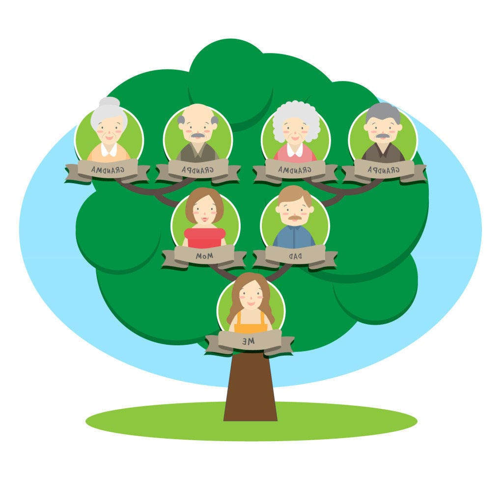 Family tree clipart green pictures on Cliparts Pub 2020!
