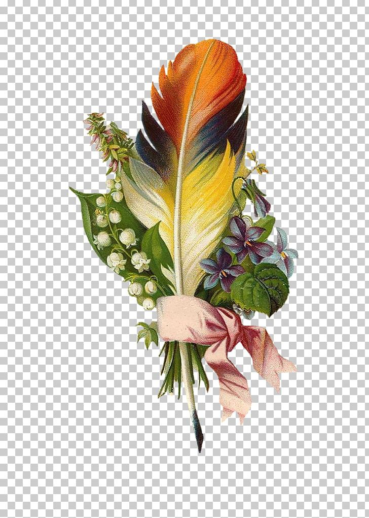 Floral design feather.