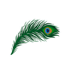 Feather clipart peacock. Vector images
