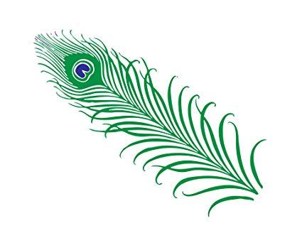 Feather clipart peacock. Feather clipart peacock. Amazon com home comforts