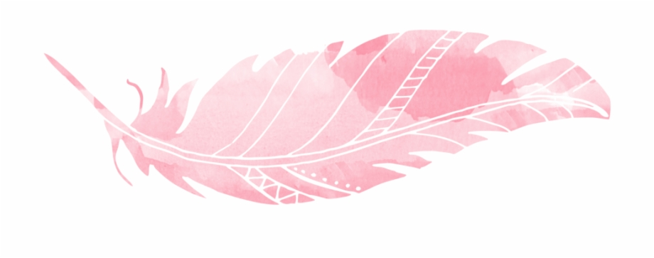 feather clipart pink