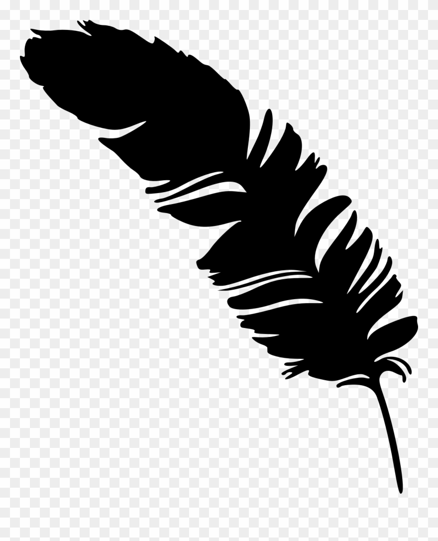 Feather silhouette feather.