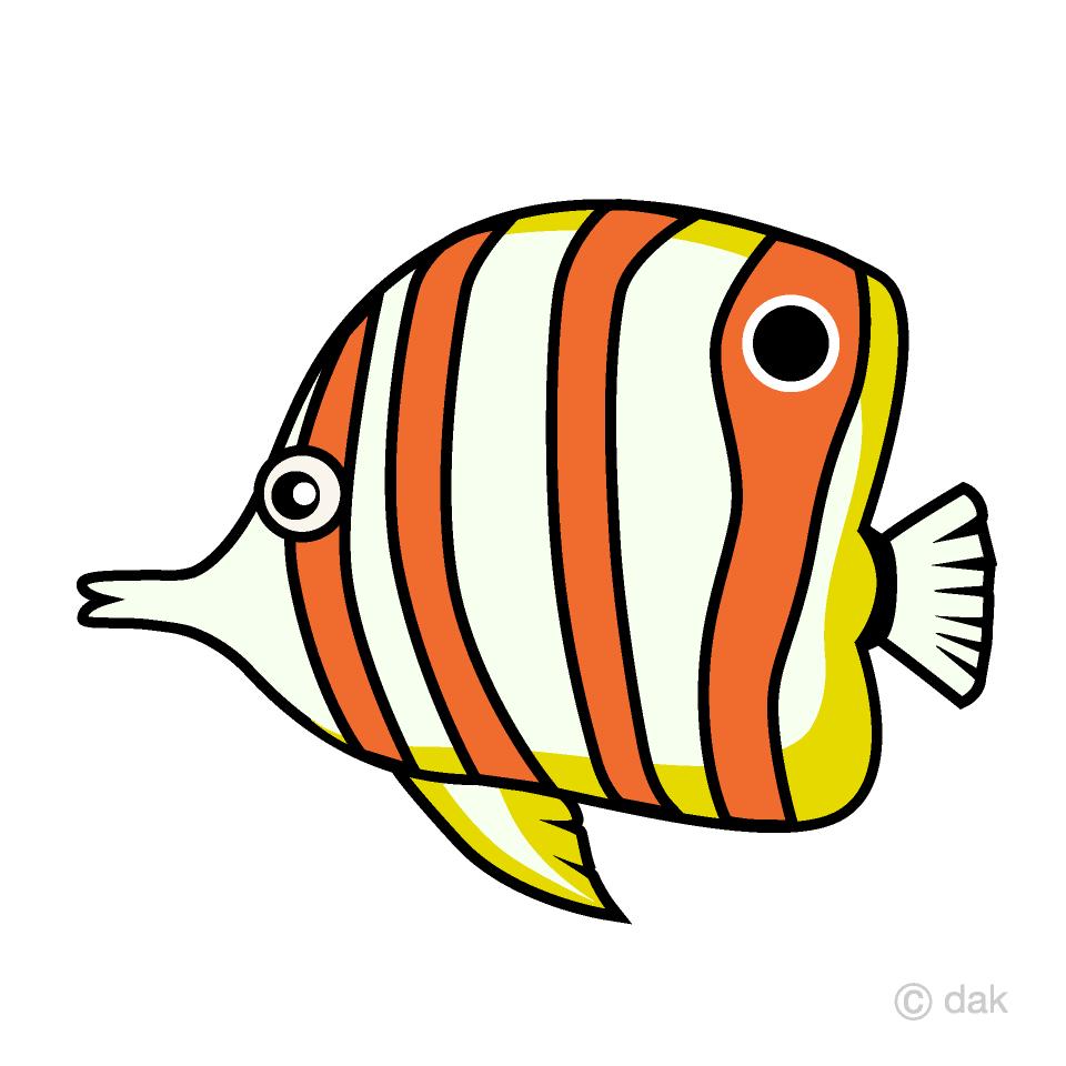 Free Angelfish Tropical Fish Clipart Image
