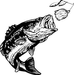 Bass Fishing Clipart