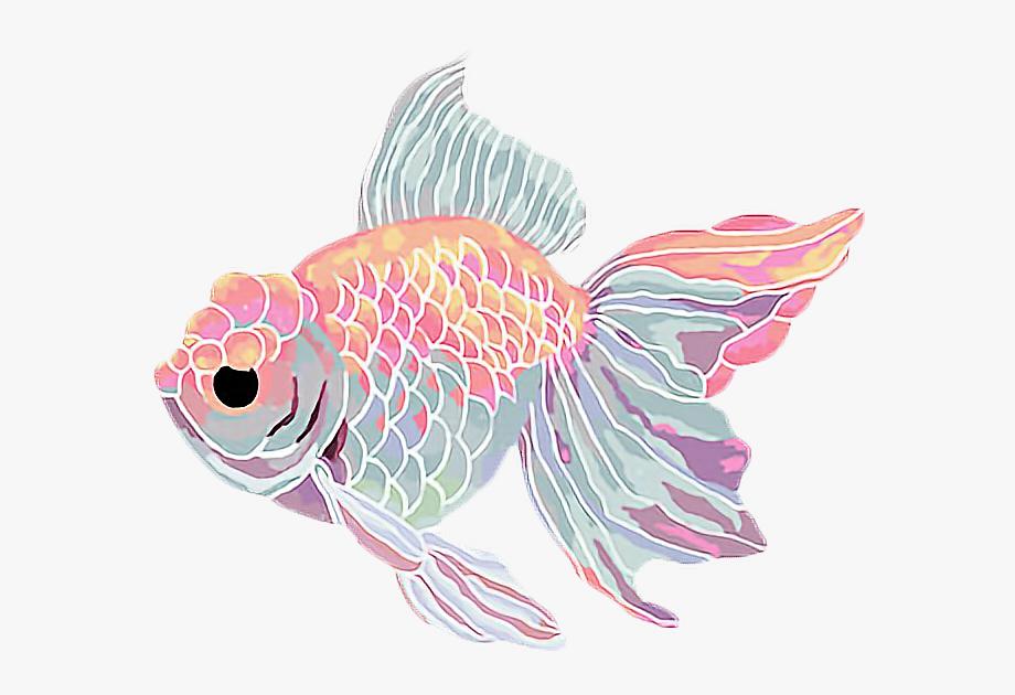 Goldfish clipart kawaii.