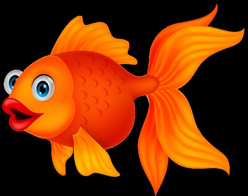 Fish clipart ocean, Fish ocean Transparent FREE for download