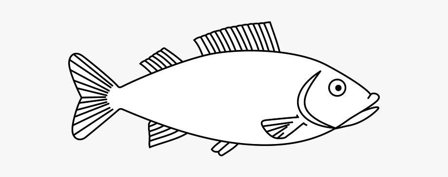 Fish template embroider.