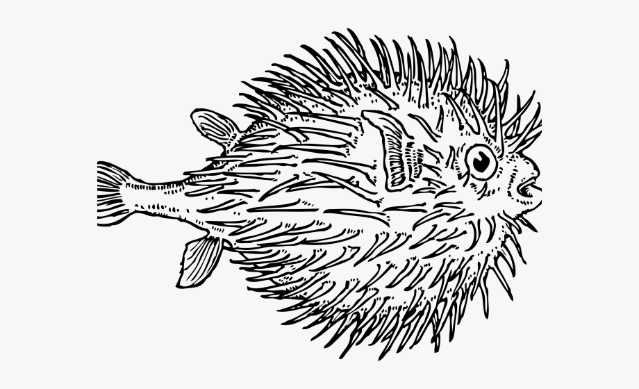 Pufferfish clipart happy.
