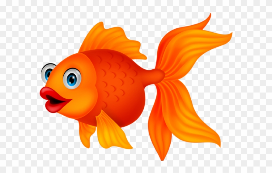 Gold fish clipart.