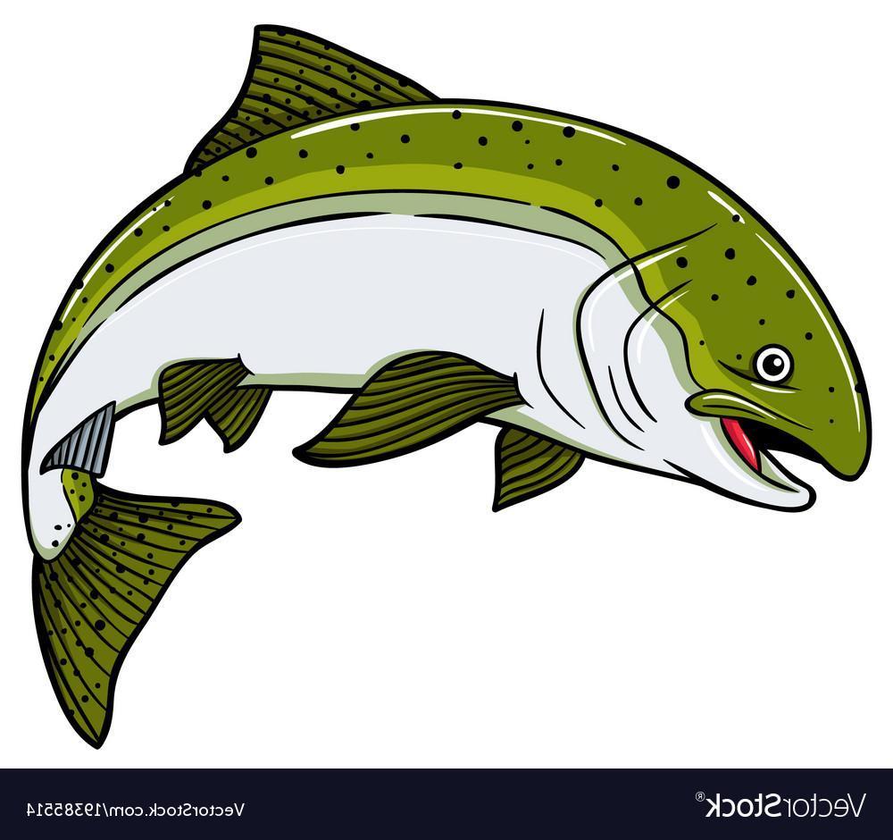 Salmon fish clipart.