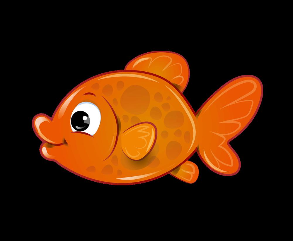 Fish clipart png transparent background image