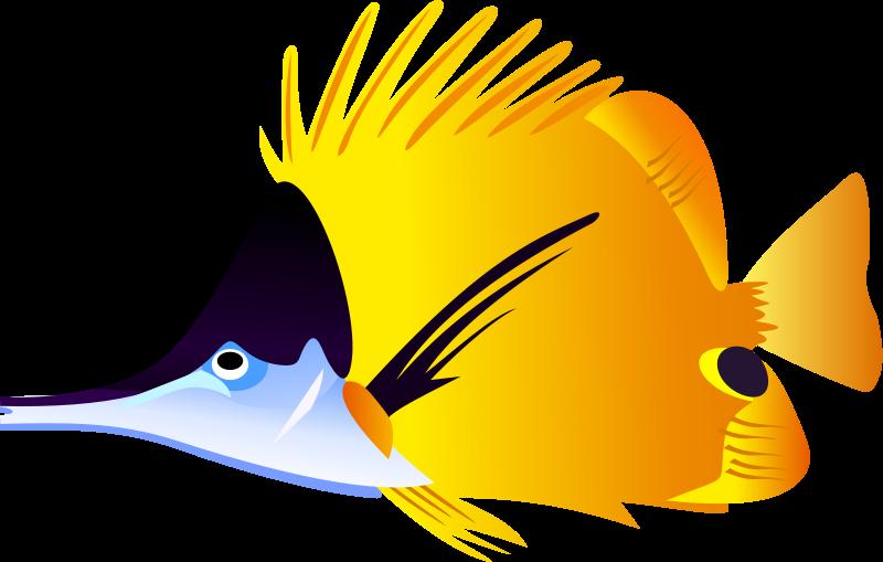 Tropical Fish Clipart