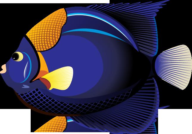 Tropical fish clip.