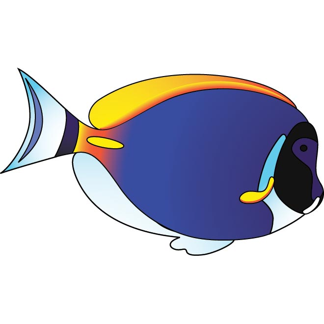 Free Fish Vector, Download Free Clip Art, Free Clip Art on