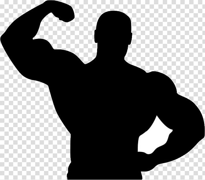 Fitness clipart male. Showing muscle centre bodybuilding