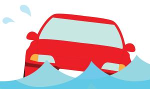 Flood cars the.