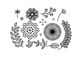 Floral free vector.