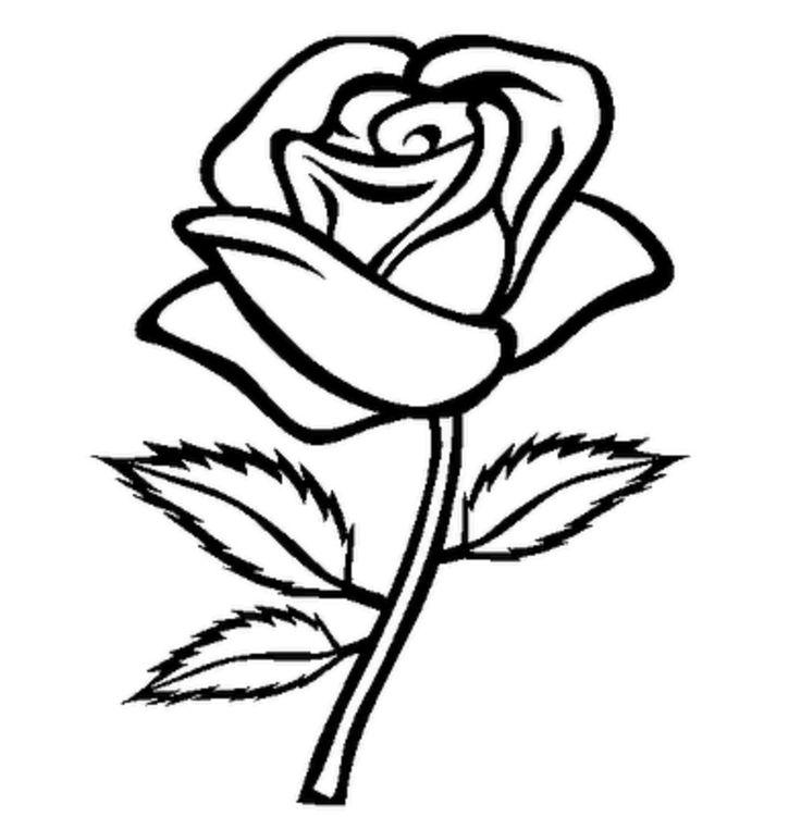 Flower bouquet clipart.