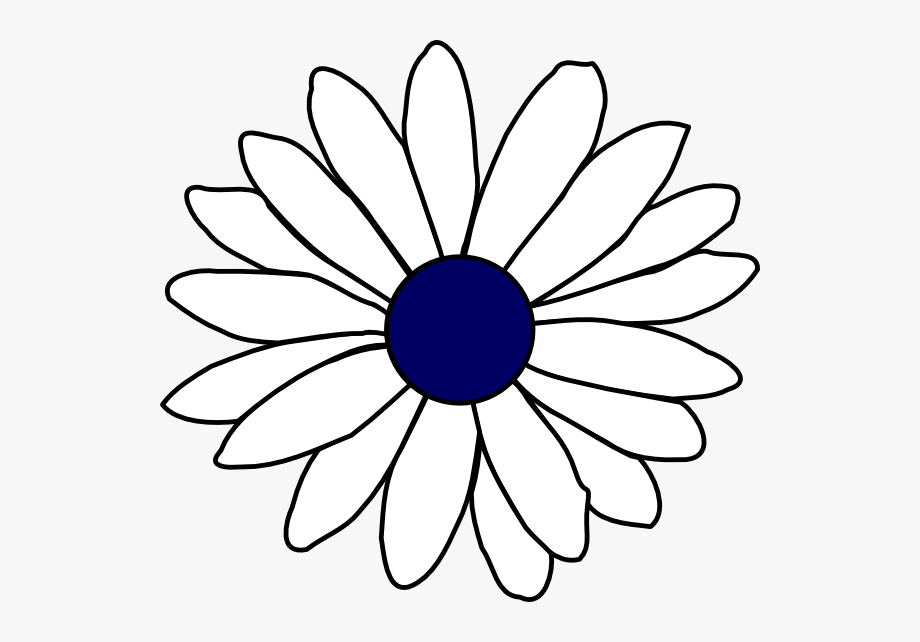 Navy center daisy.