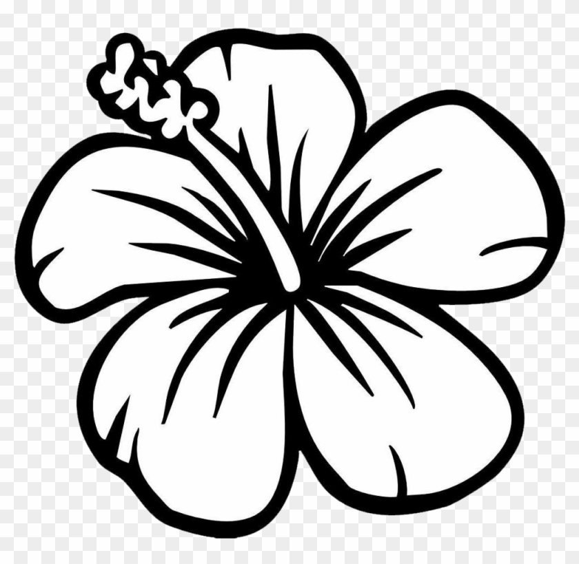 flower clipart black and white hibiscus
