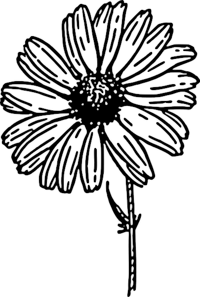flower clipart black and white small