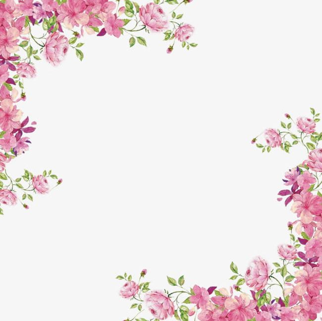 Flowers borders png.
