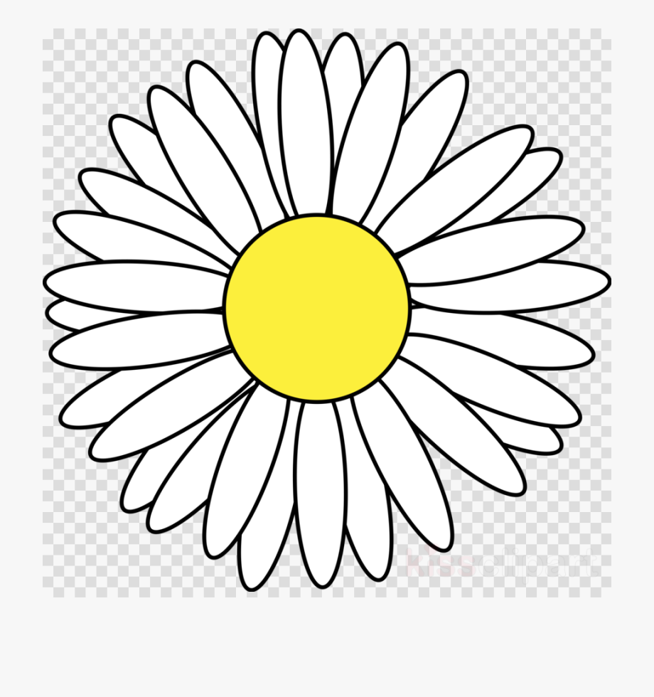 Flower Clipart Png Daisy