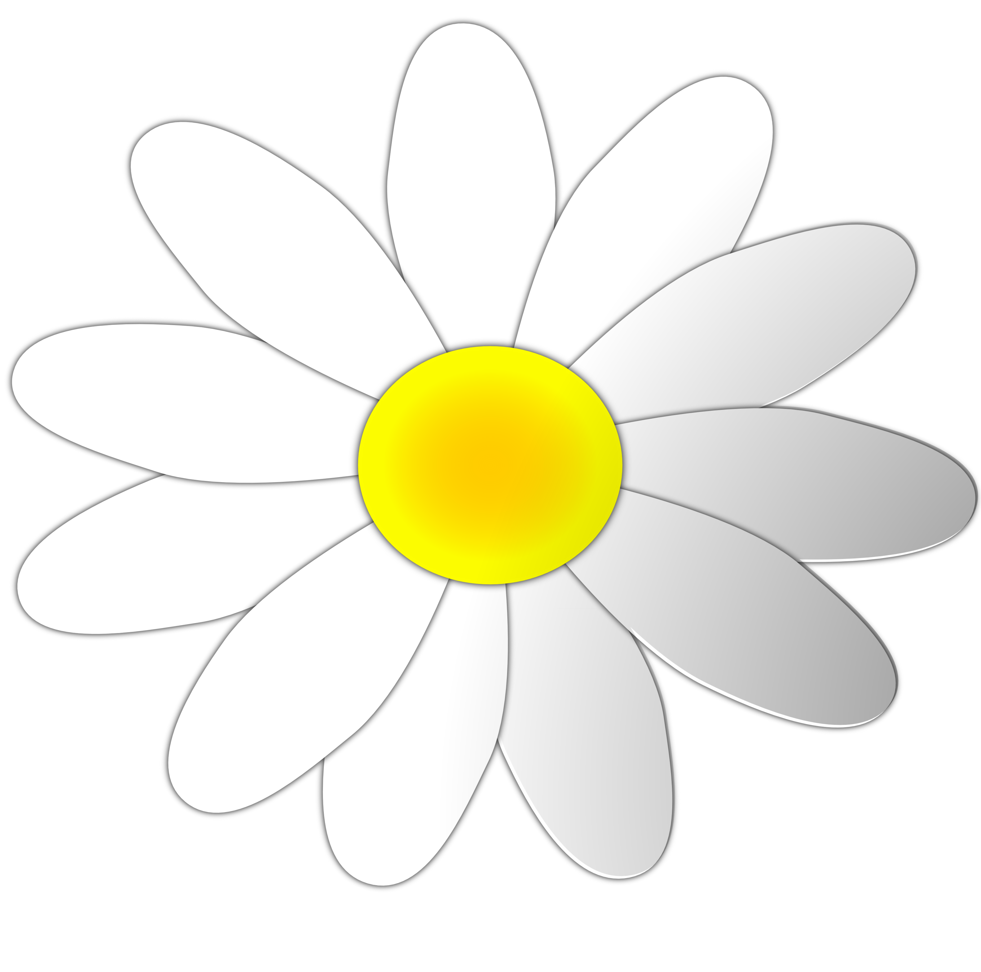 Free Daisy Flower Cliparts, Download Free Clip Art, Free