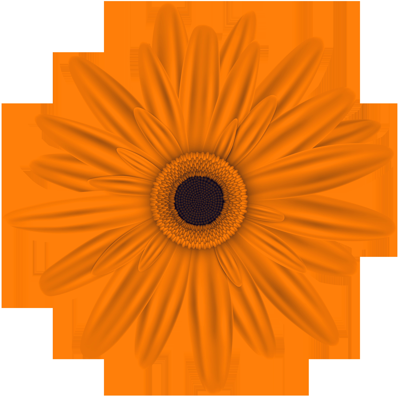 Orange flower clip.