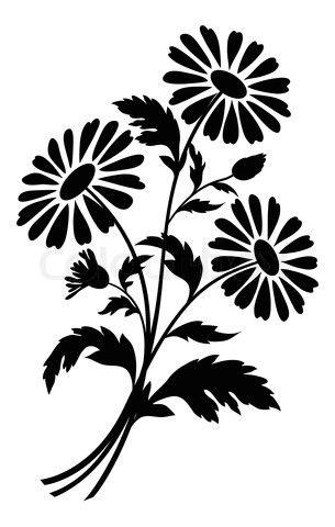 Stock image chamomile.
