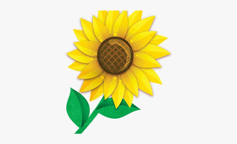 Sunflower clipart sunflower.