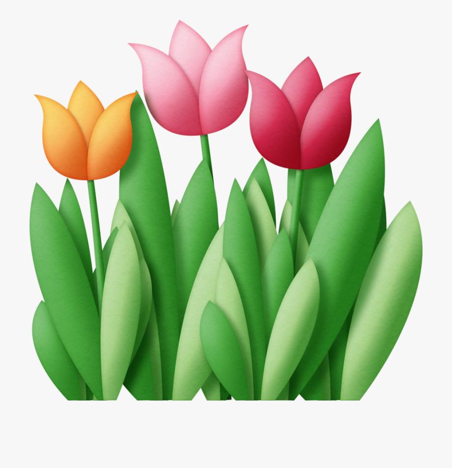 Tulip clipart flower.