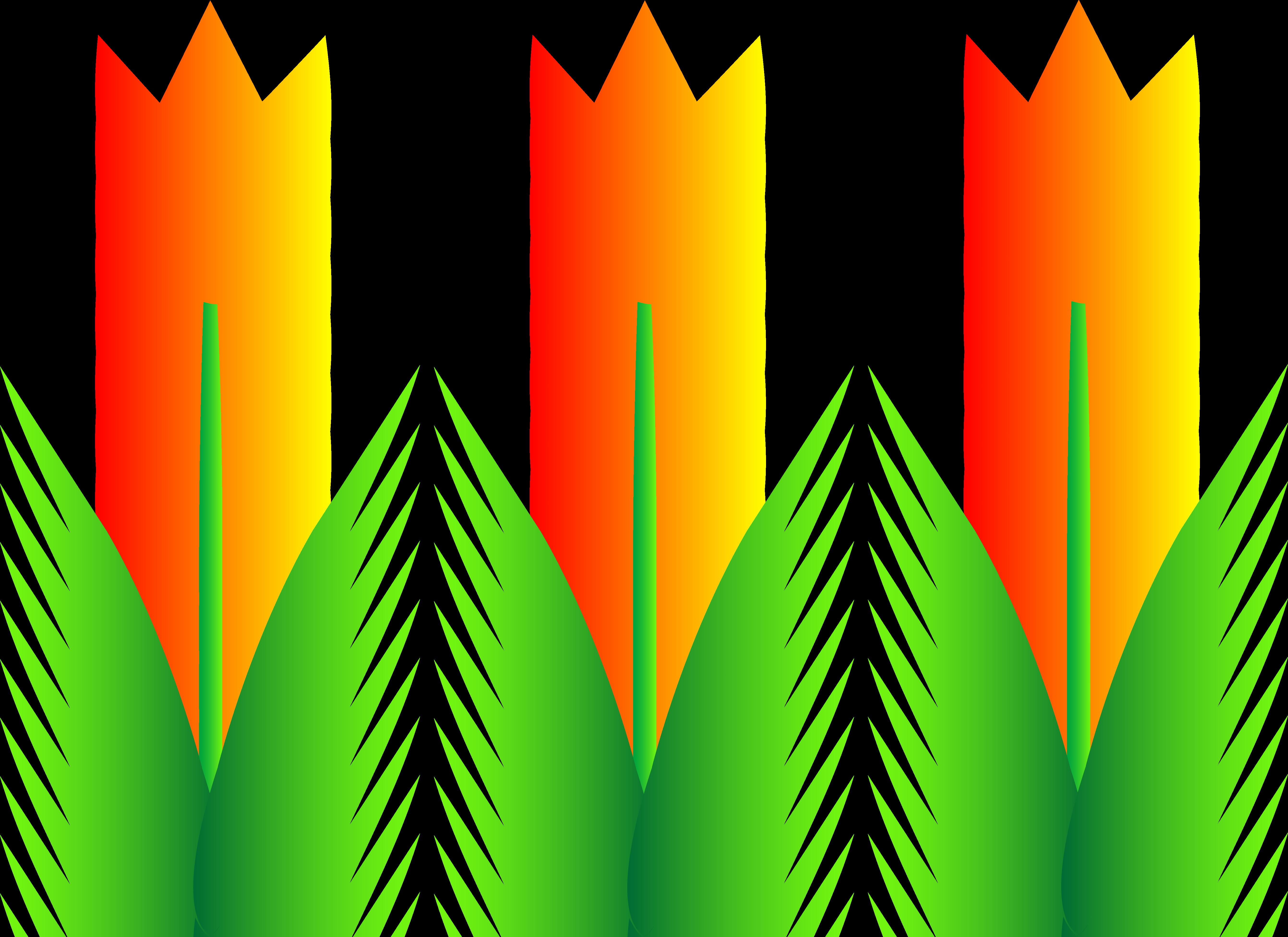 Free free tulip.