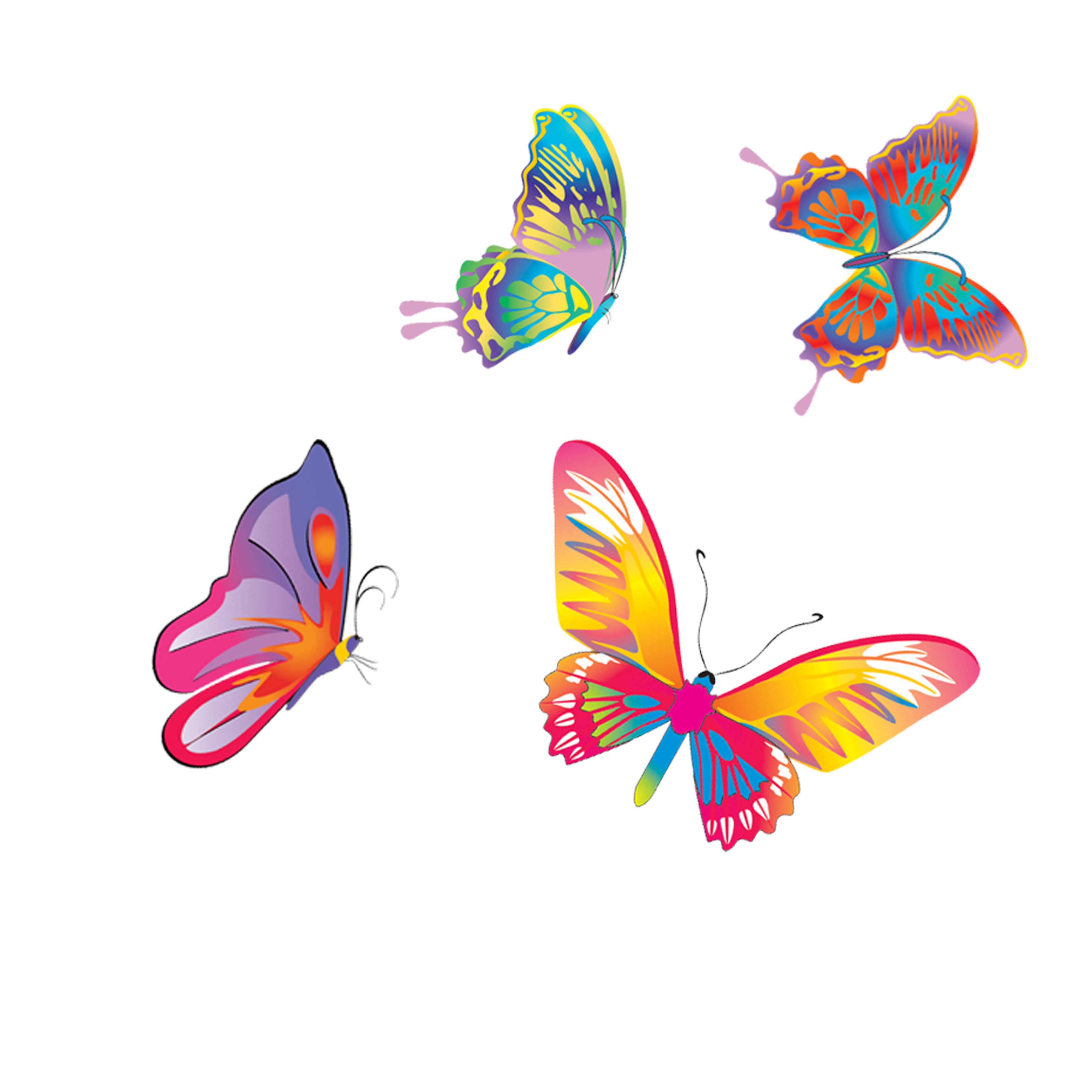 Fly clipart different color. Butterfly colored butterflies png