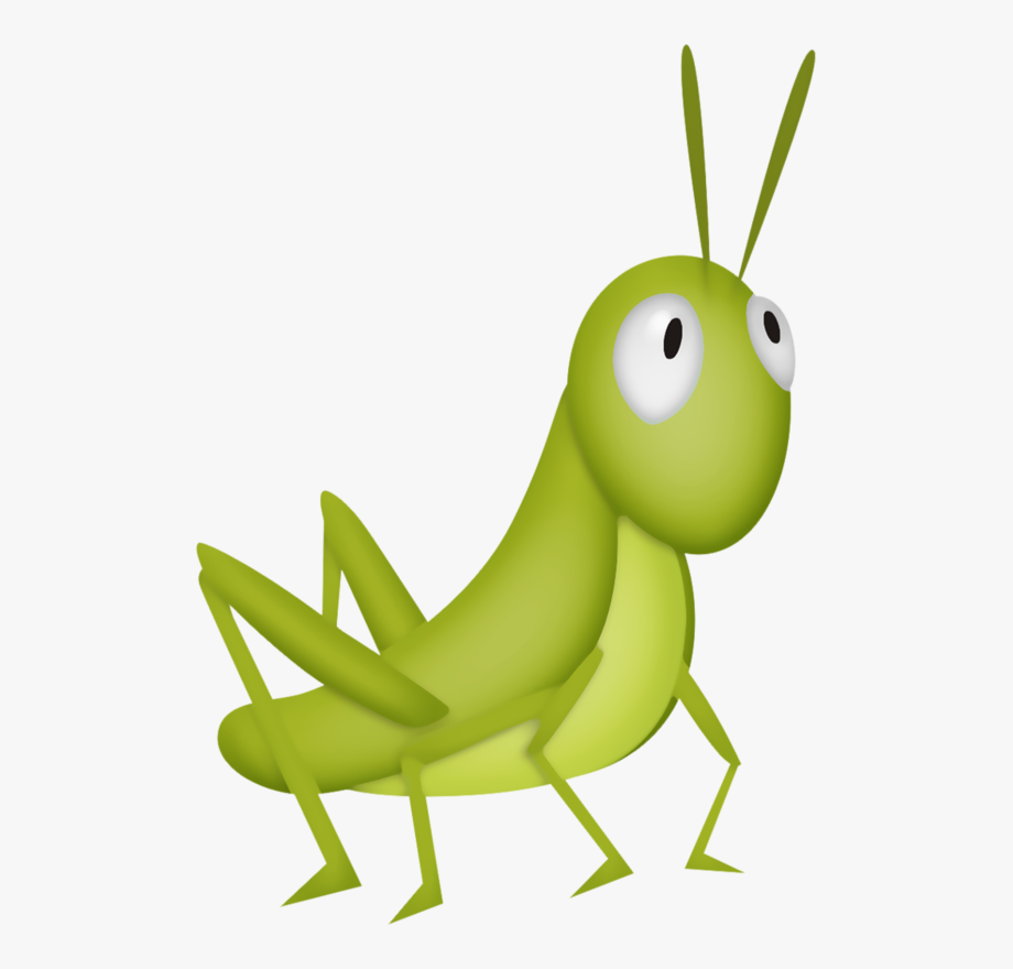 Fly clipart grasshopper. Cricket insect kids