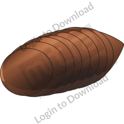 Fly clipart pupa of a. Fly clipart pupa of a. Download for free png