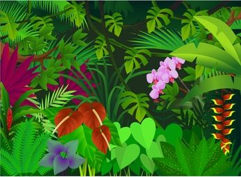 forest background clipart thick