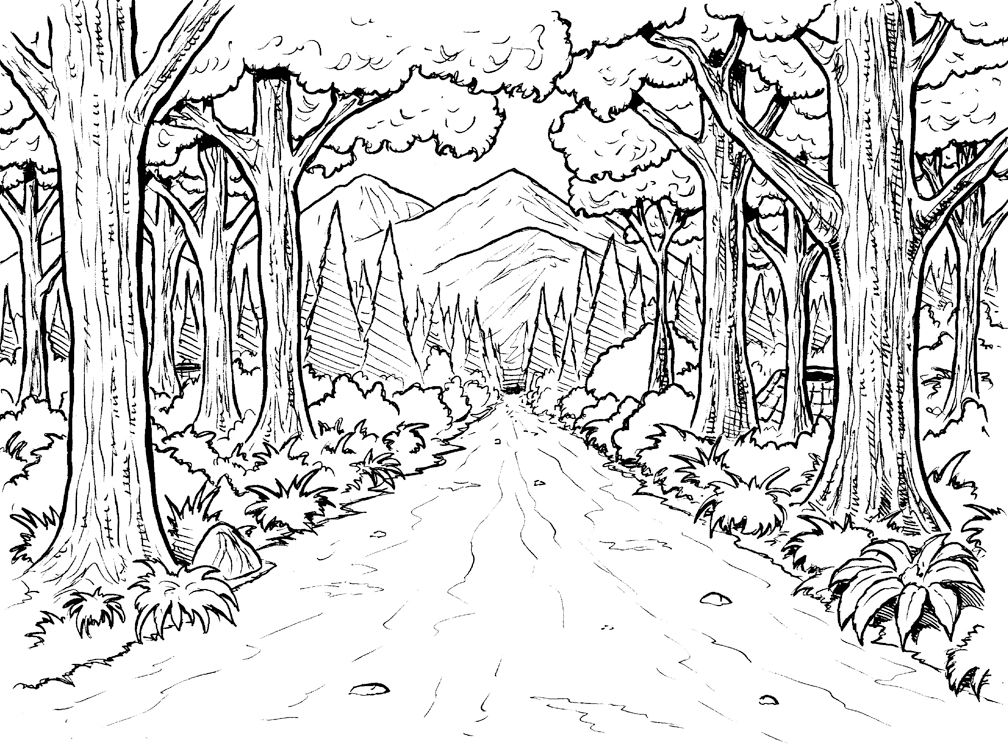 Forest clipart black and white coloring. Background page below are